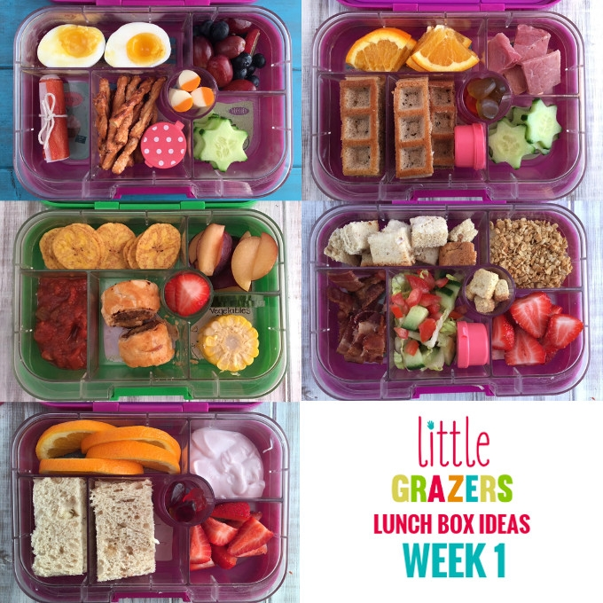 Lunch Box Ideas Week 1 Little Grazers
